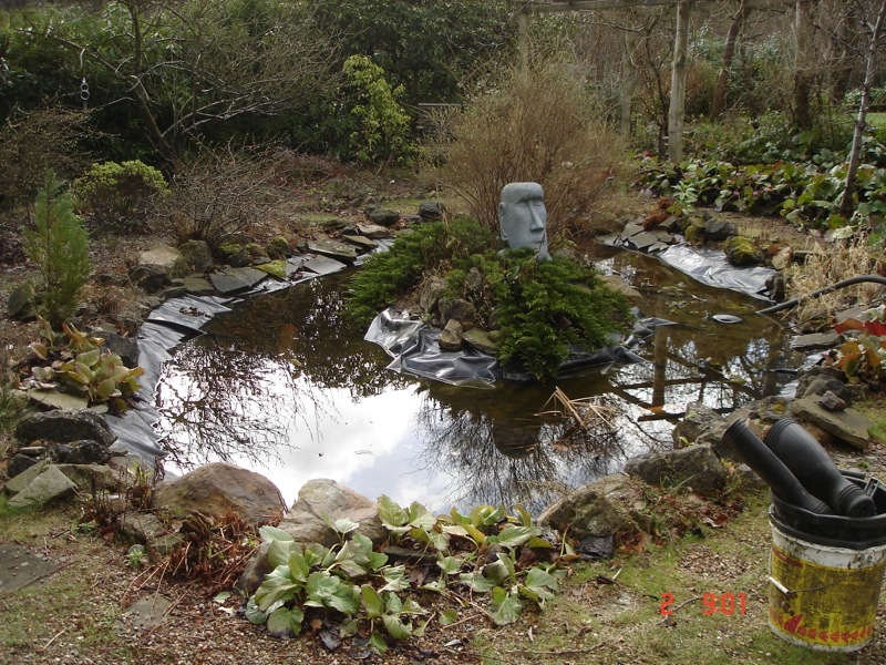 Repairs for fish ponds and waterfalls pond it Waterfall for ponds