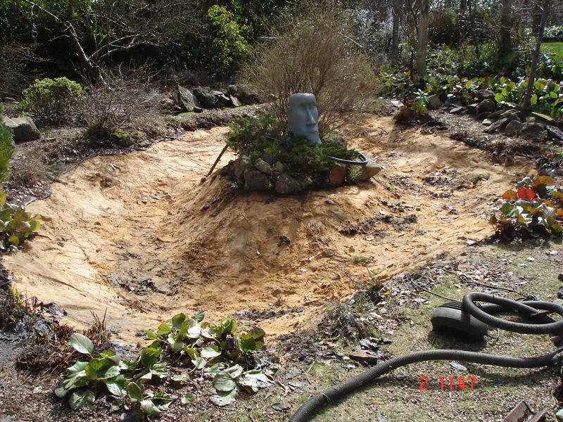 Repairs for fish ponds and waterfalls pond it for Pond fish uk