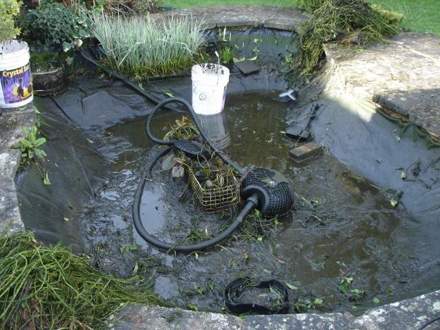 Pond Maintenance Pond It